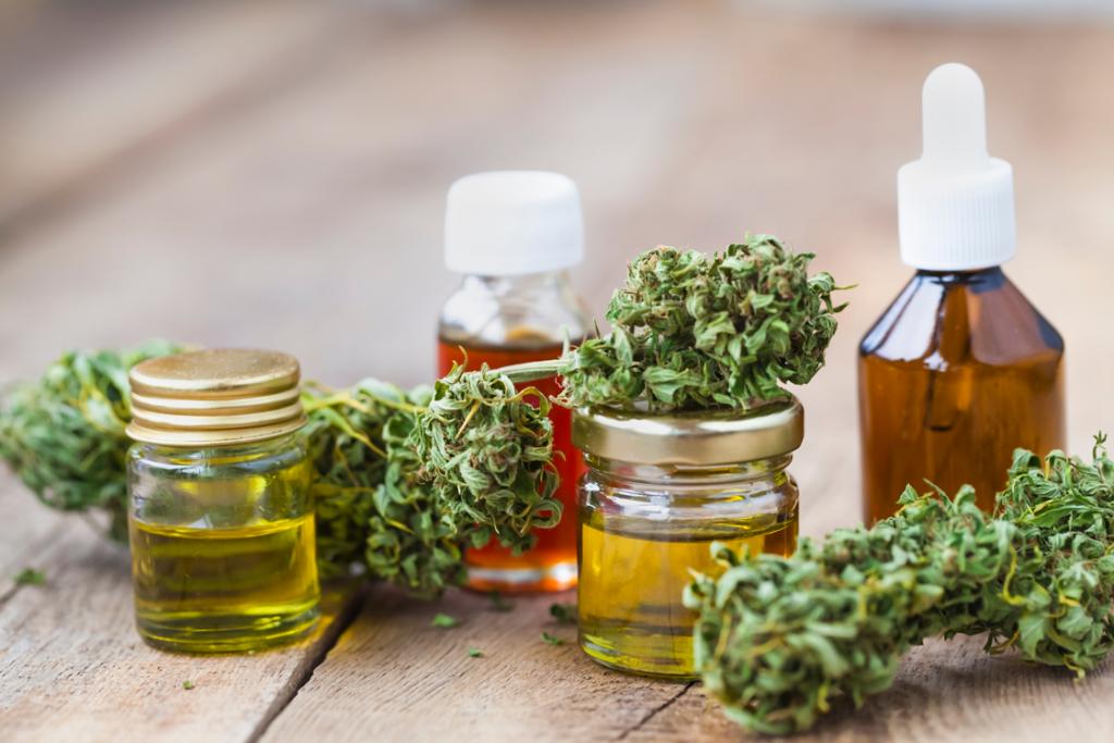Cannabispflanze und Oele